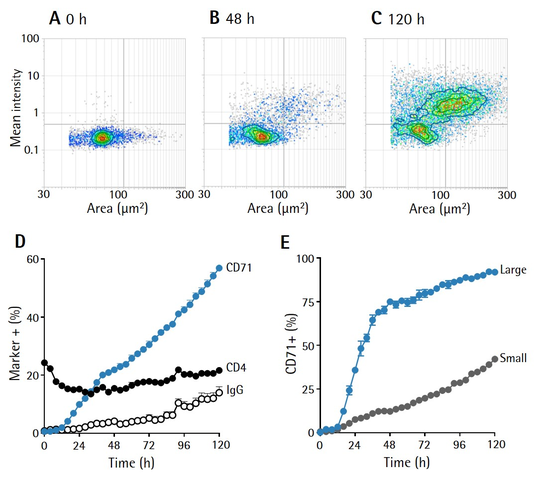 Cell by Cell Subpopulation Figure 1b - Analyze subsets of activated T-cells: CD71 upregulation
