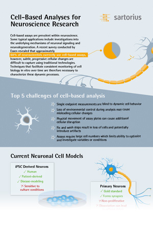 Infographic: Cell-Based Analyses for Neuroscience Research