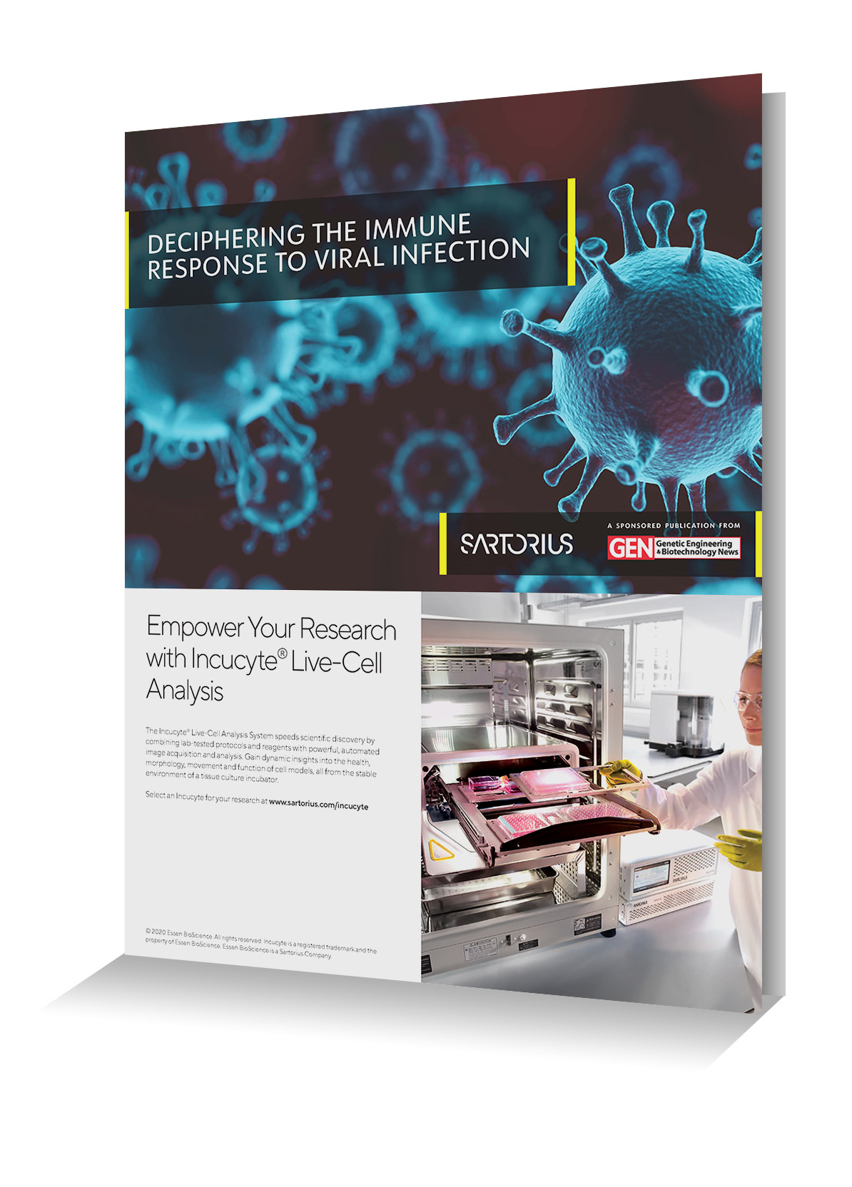 eBook: Deciphering Immune Response to Viral Infection