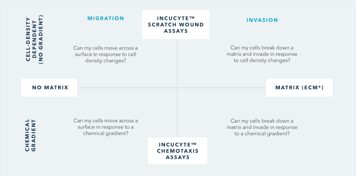 IncuCyte® Cell Migration and Invasion Assay Selection Guide