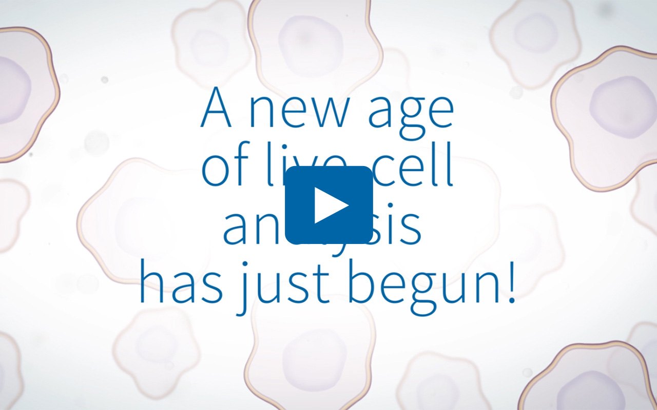 Real-time cell health and viability analysis without removing your cells from the incubator