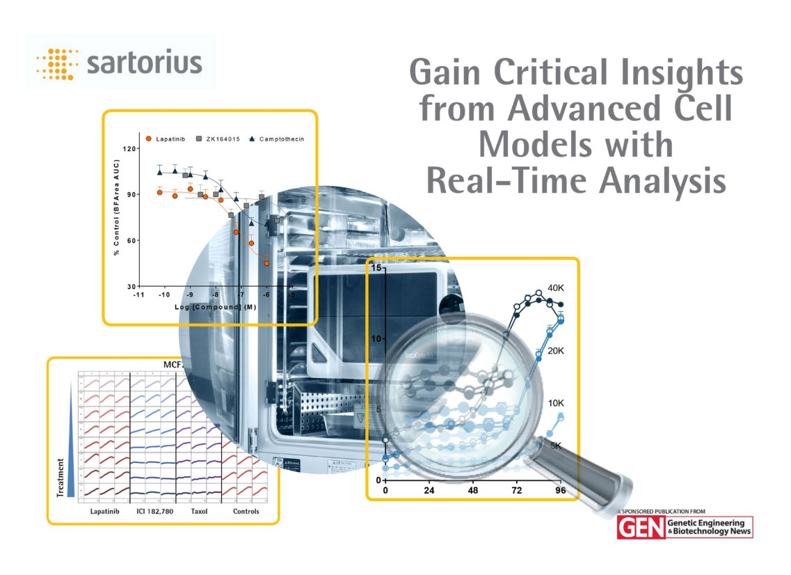 eBook: Gain Critical Insights from Advanced Cell Models with Real-Time Analysis