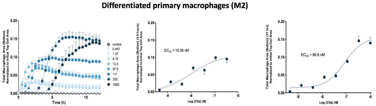 Immunology Macrophages Fig 2b